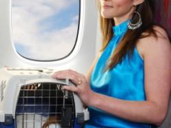 שאלת את עצמך איך לבחור כלוב טיסה לבעלי חיים?